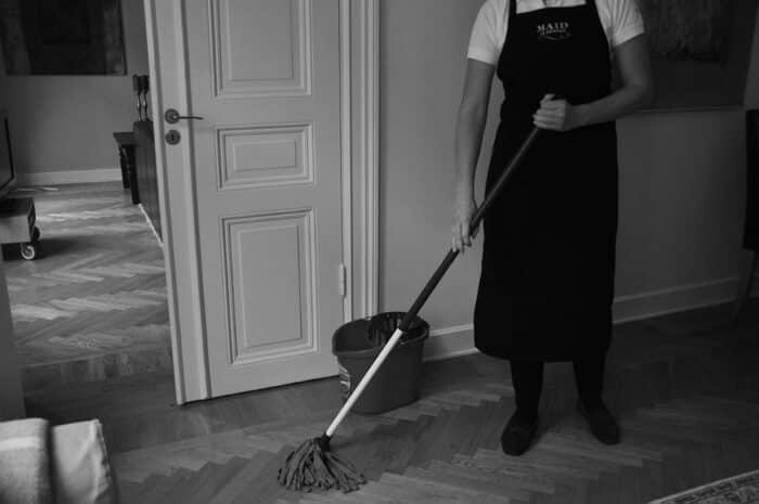maid_cleaning_clear